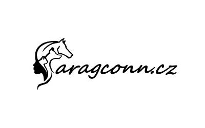 www.aragconn.cz