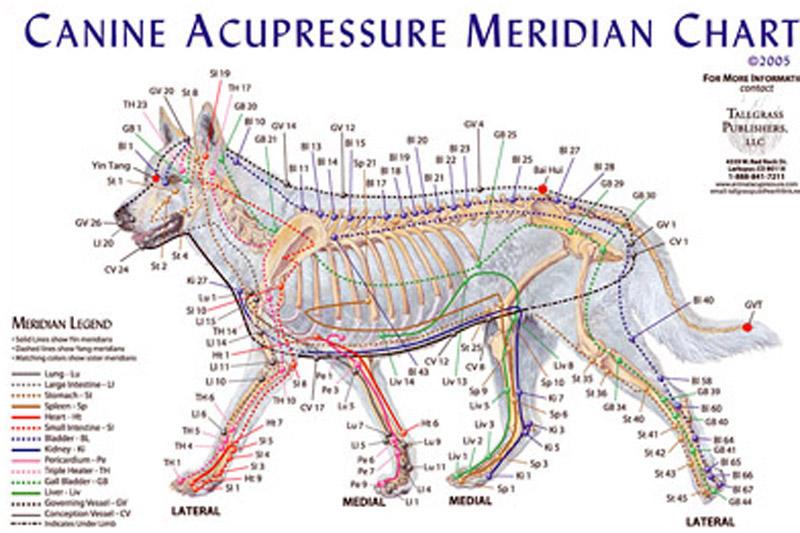 Meridianova masáž